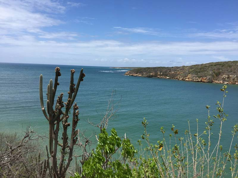 A scenic view of Guanica Bay, which researchers have determined has high levels of contamination from PCBs.