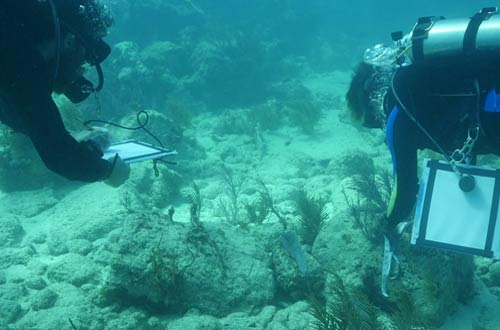 Exploring Shipwrecks in the Caribbean