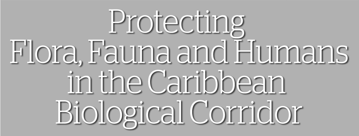 Protecting Flora, Fauna and Humans in the Caribbean Biological Corridor